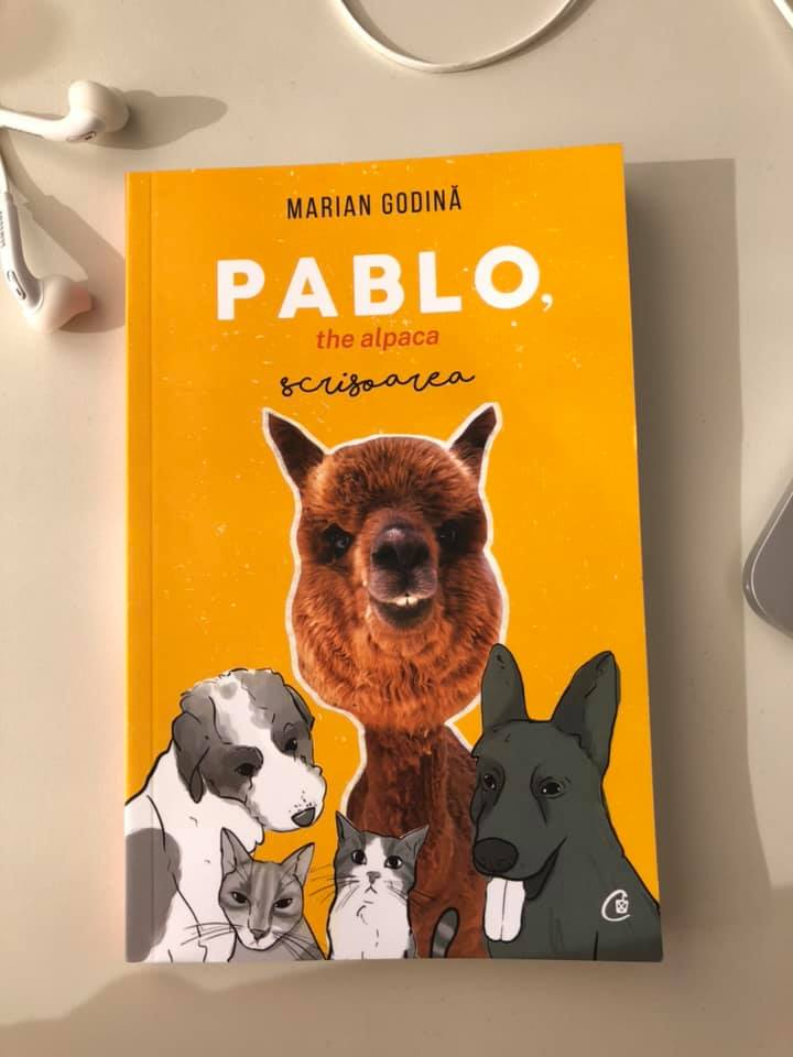 pablo the alpaca